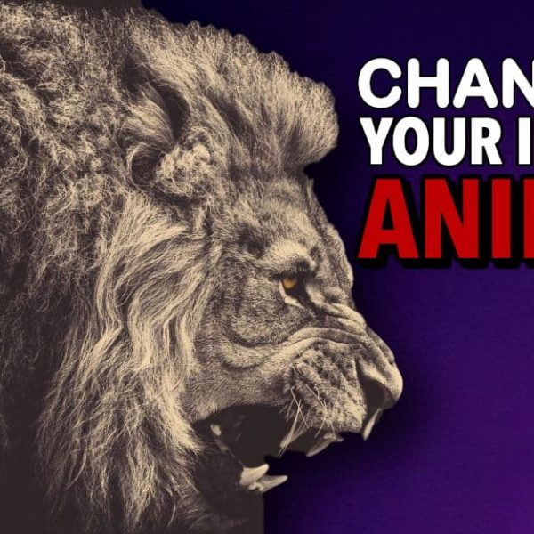 Channel Your Inner Animal & Optimize Your Life For True Happiness